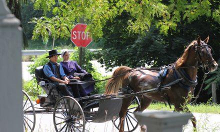 Акушерска практика в САЩ – част 2. За амишите